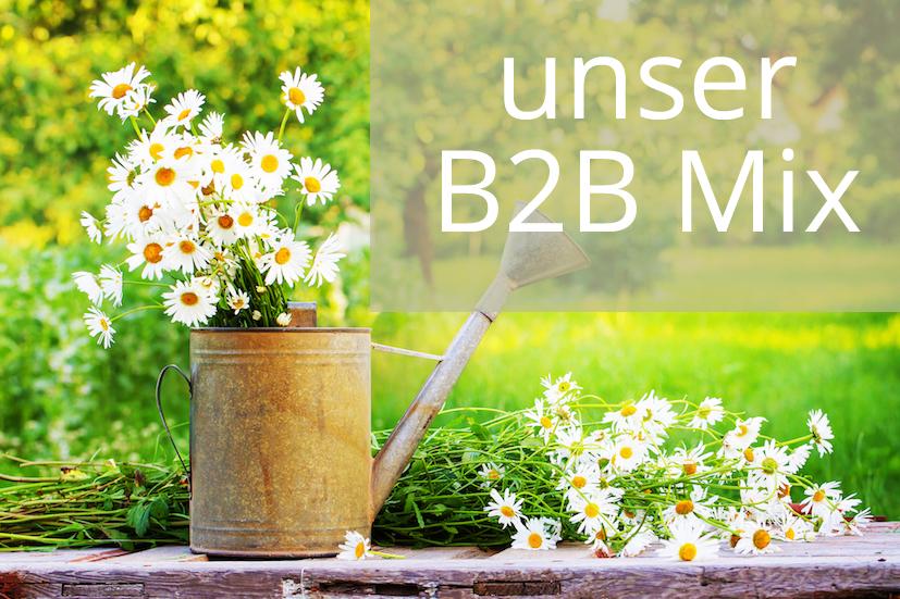 Angebot: B2B Mix